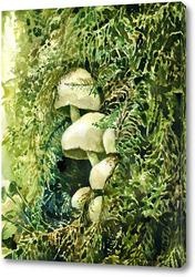 Картина Лесные сокровища