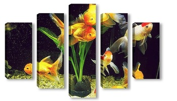 Модульная картина Fish010