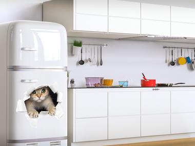 Наклейка Кот в холодильнике