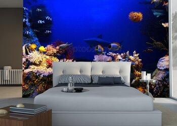 Фотообои Подводные рыбки и кораллы