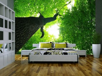 Фотообои Зеленые деревья